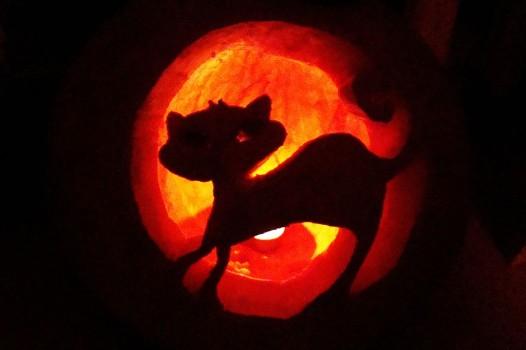 halloweencat