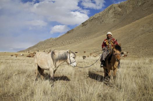 Tseveng, a Mongolian nomadic herder