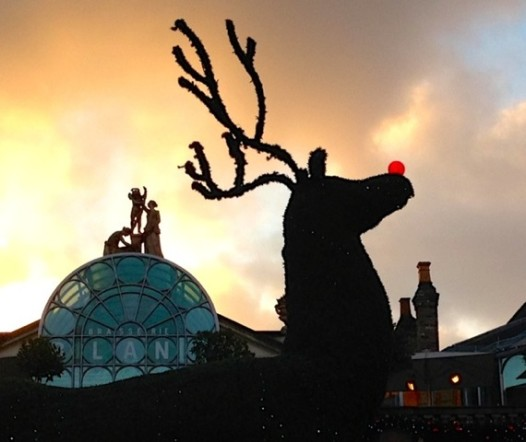 Rudolph joins the Neo-Classical figures atop London's Covent Garden market on a picture-perfect December afternoon (Millie Ball)