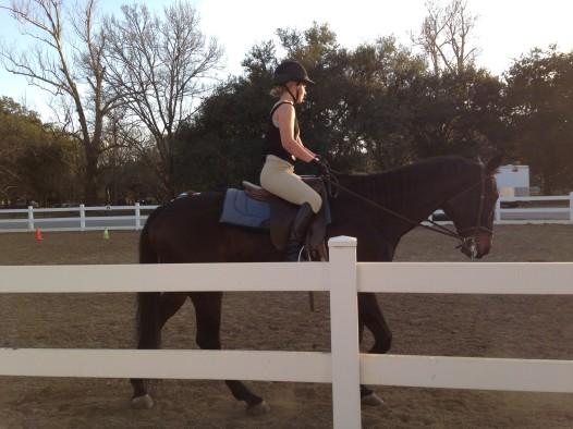 Test riding the Mardi Gras horses