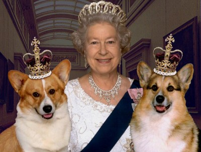Her Majesty & Corgis. Do they drink Crown Royal? (Image: www.nicespace.me)