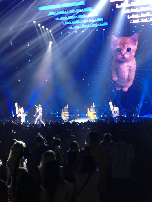 Rainbow-colored cats might be expected, but Cyrus proved she can sing (Photo by Jeffrey Preis)