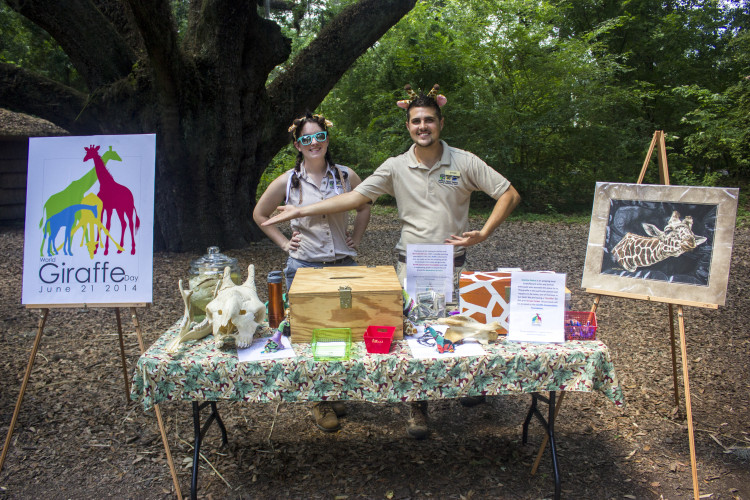 "Hoofstock keepers Megan Halloran and Ethan Anderson man the ""Giraffle"" table, featuring artwork by Jeanine Nahra. All proceeds from the raffle went towards the Giraffe Conservation Foundation. (Photo: Hanna Rasanen)"