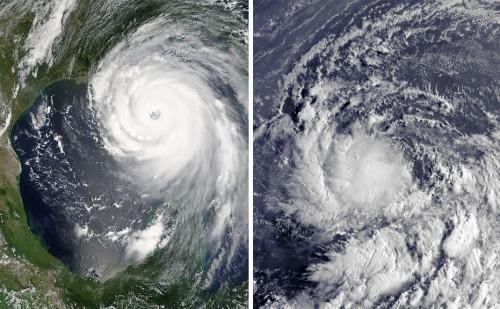hurricanegender
