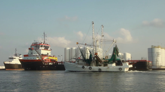 Fourchon shrimp and oil boats (Photo: Rob Davis)