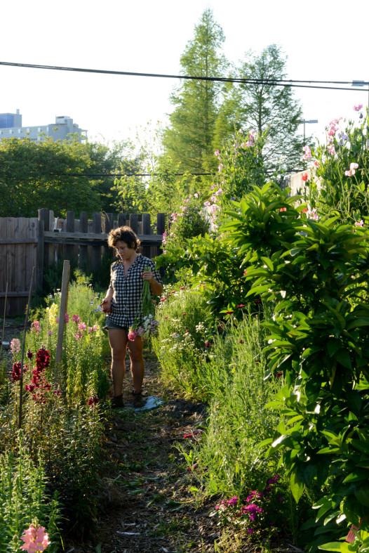 Denise Richter walks the 4,200-square-foot growing field at Pistil + Stamen.