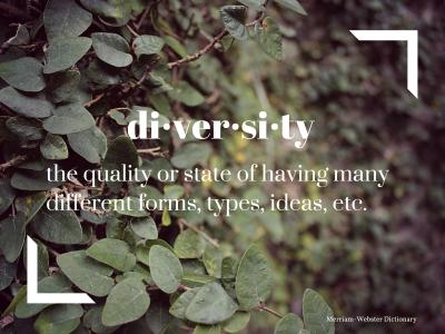 Diversity_Defiition-1421253442
