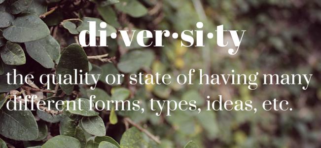 Diversity_Defiition-1421262940